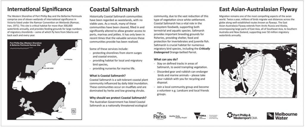 Coastal Saltmarsh interpretive sign. Click for PDF version.