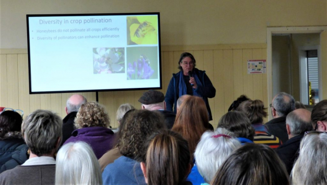 Katja discussing the need for diversity of bees in crop pollination to the audience
