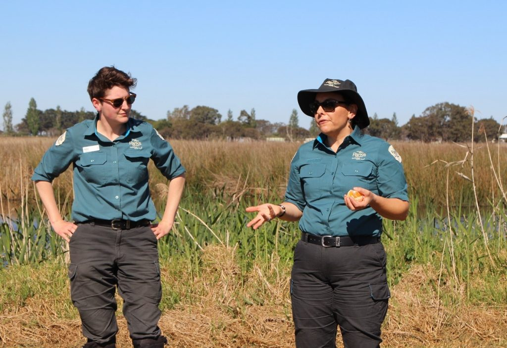 Parks Victoria staff giving a tour of Macleod Morass Wildlife Reserve