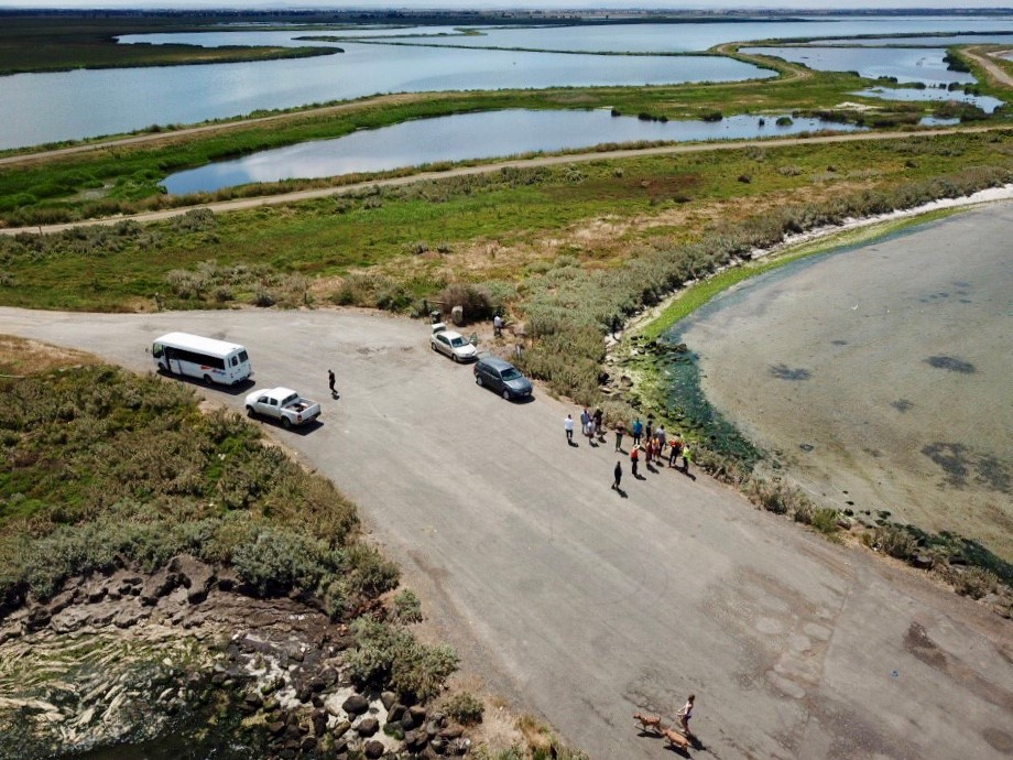 Image taken from a drone showing training participants walking in Western Treatment Plant